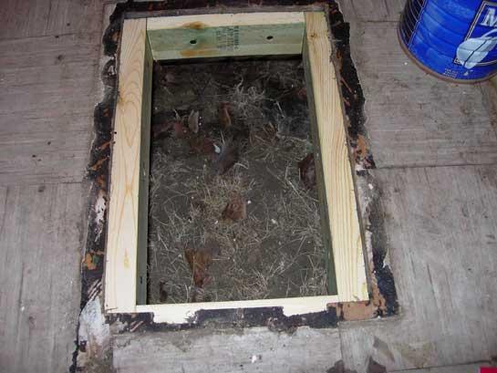 Propane Floor Furnace Floor Matttroy